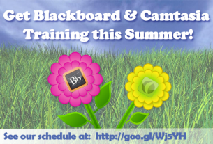 Summer Blackboard & Camtasia Training